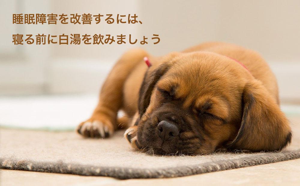 睡眠障害を改善するには、寝る前に白湯を飲みましょう