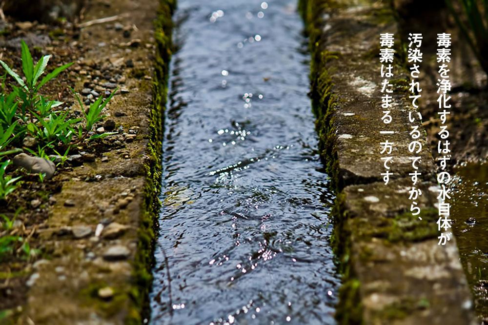 毒素を浄化するはずの水自体が汚染されているのですから、毒素はたまる一方です