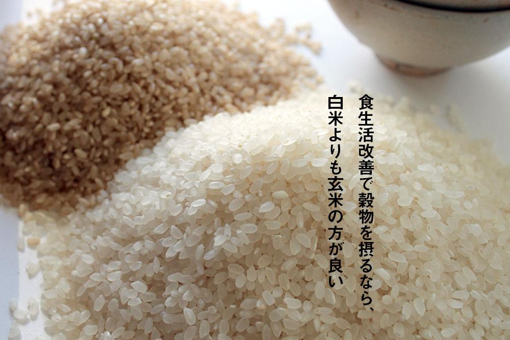 食生活改善で穀物を摂るなら、白米よりも玄米の方が良い