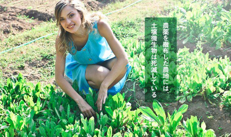 農薬を撒布した農地には、土壌微生物は死滅している