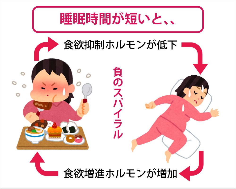 睡眠時間が短いと、食欲抑制ホルモンが低下して、食欲増進ホルモンが増加します
