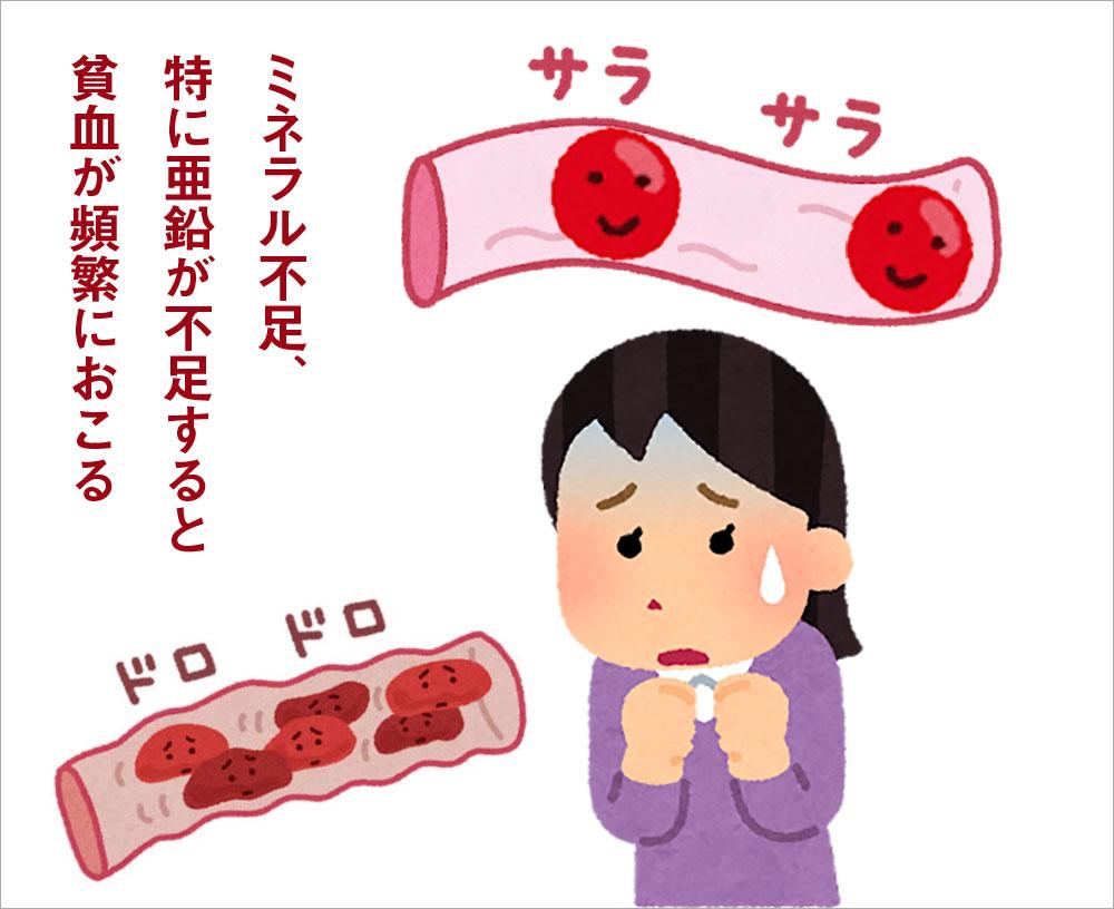 ミネラル不足、特に亜鉛が不足すると貧血が頻繁におこる