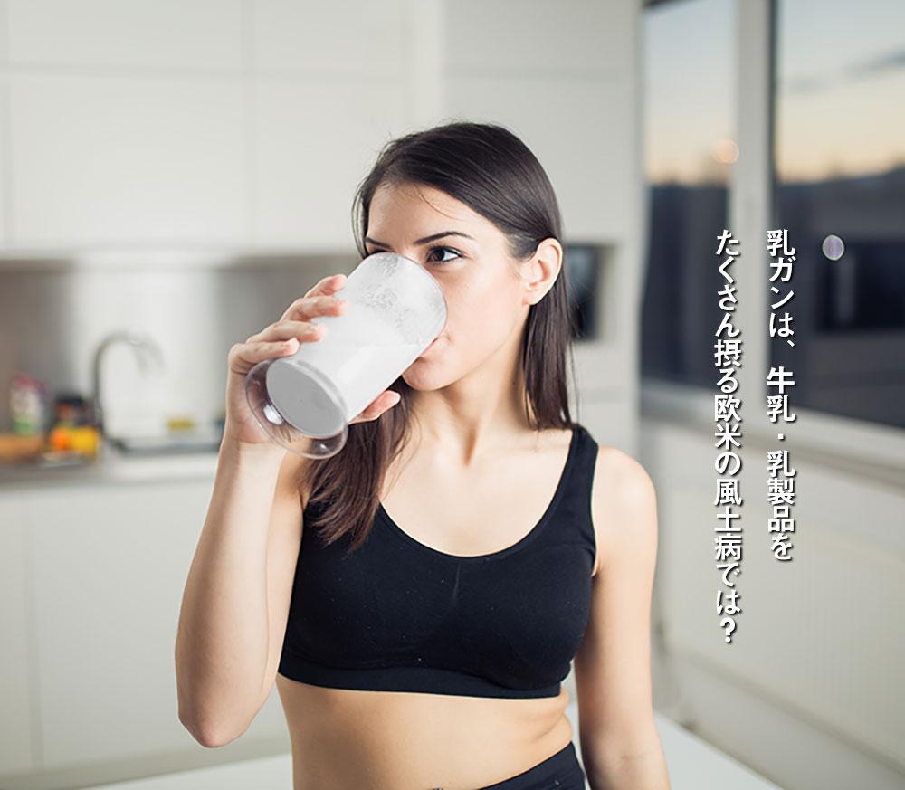乳ガンは、牛乳・乳製品をたくさん摂る欧米の風土病では?
