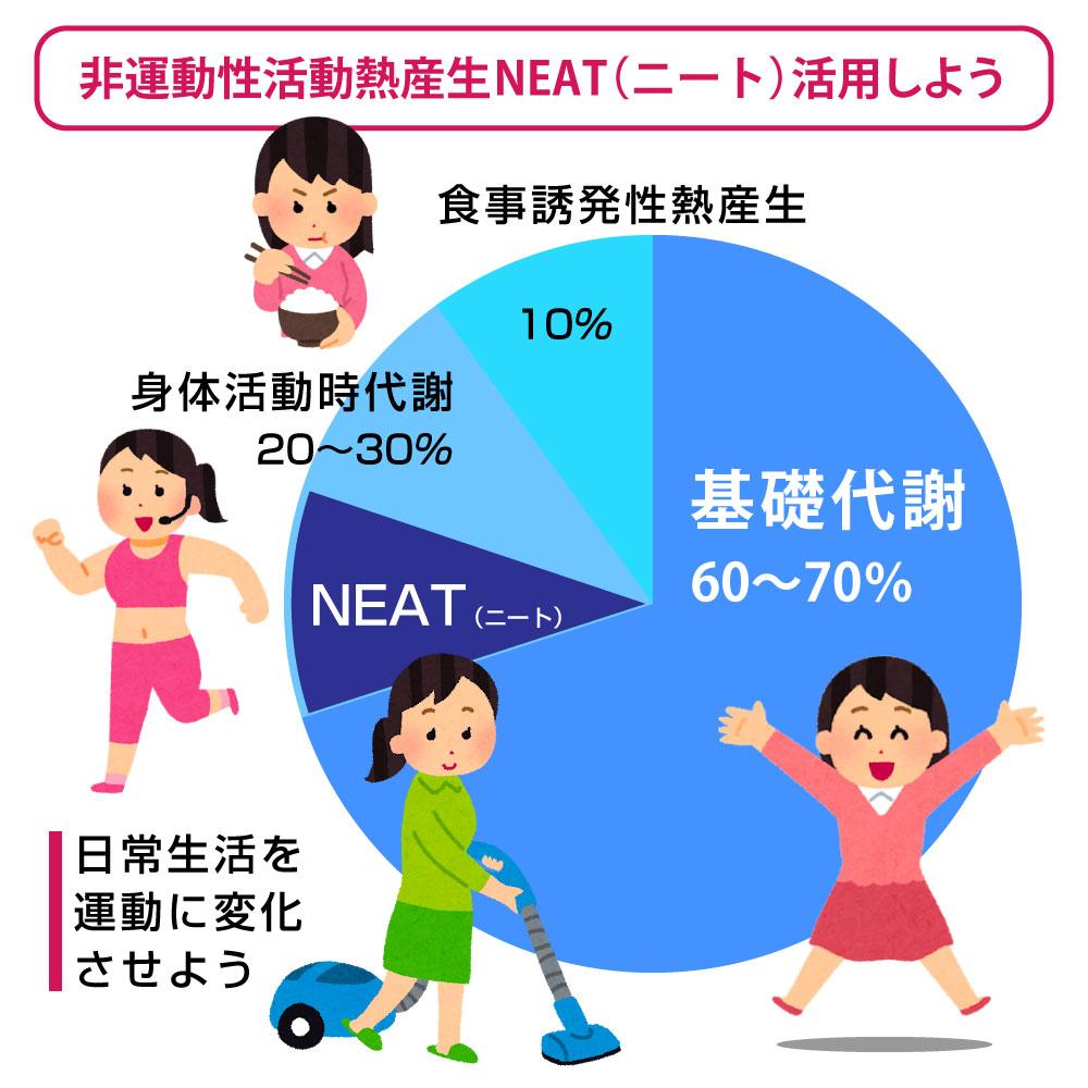 NEAT(ニート)とは、カンタンにいうと、運動ではない日常生活の活動による消費エネルギー