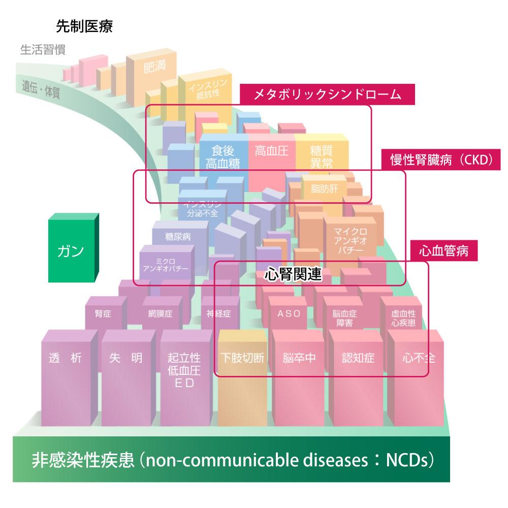 メタボリックドミノの慢性腎臓病や心血管病