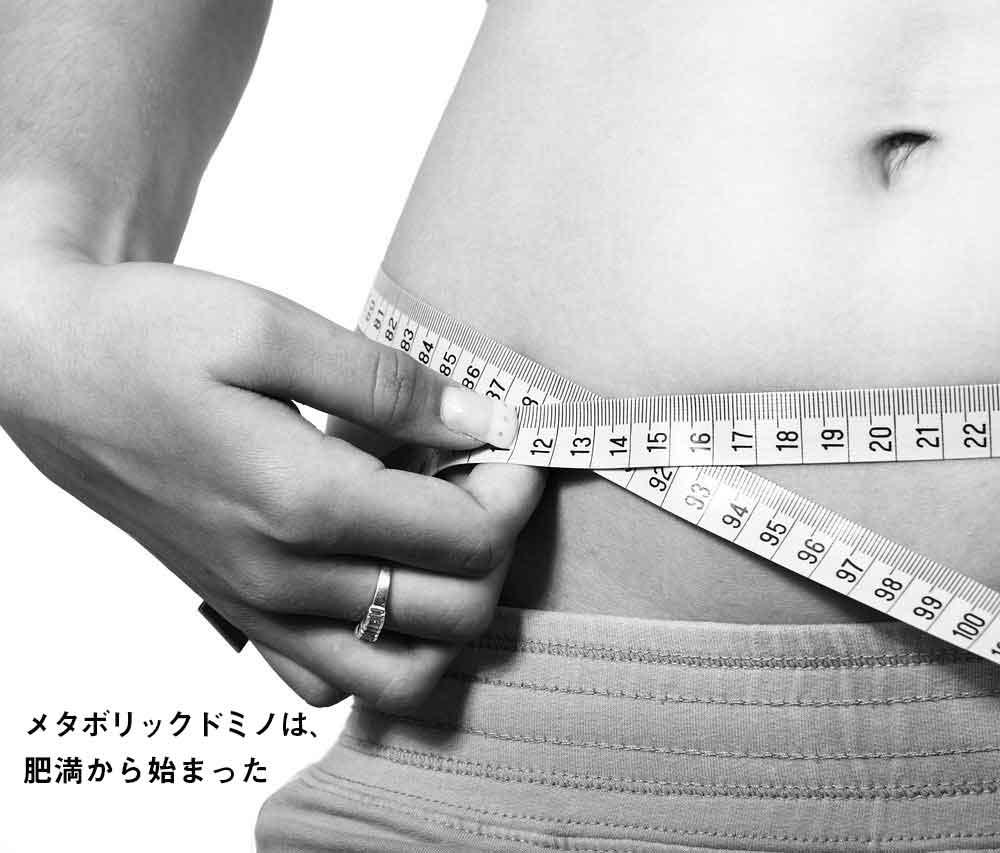 メタボリックドミノは、肥満から始まった