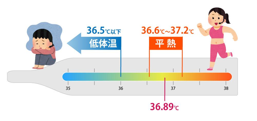 平均体温は、だいたい36.5℃