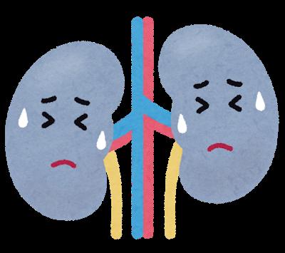 腎臓がその役割を終えて、人工透析治療へ