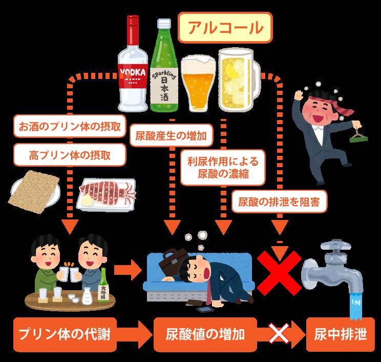 そもそもアルコールの摂取が、尿酸値を上げる作用があります