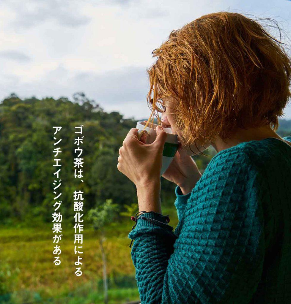 ゴボウ茶は、サポニンが多く含まれていて朝鮮人参と同様の効果がある