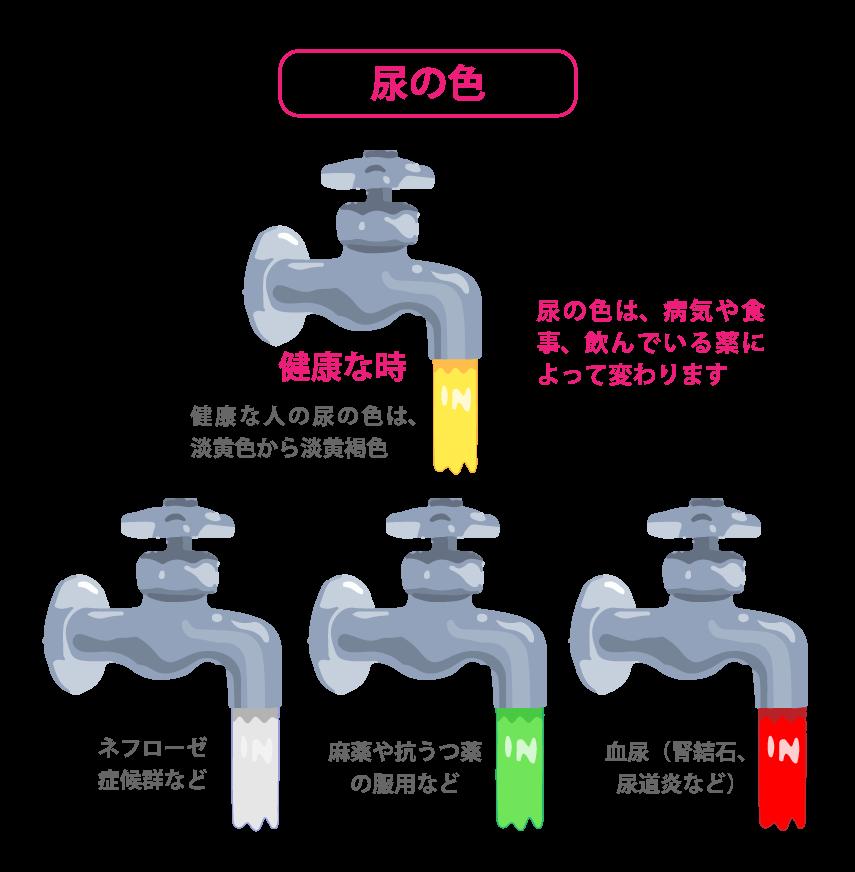 『尿』の色でわかる腎臓機能の低下